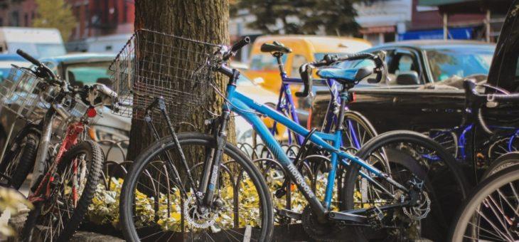 Spis økologisk på cyklen